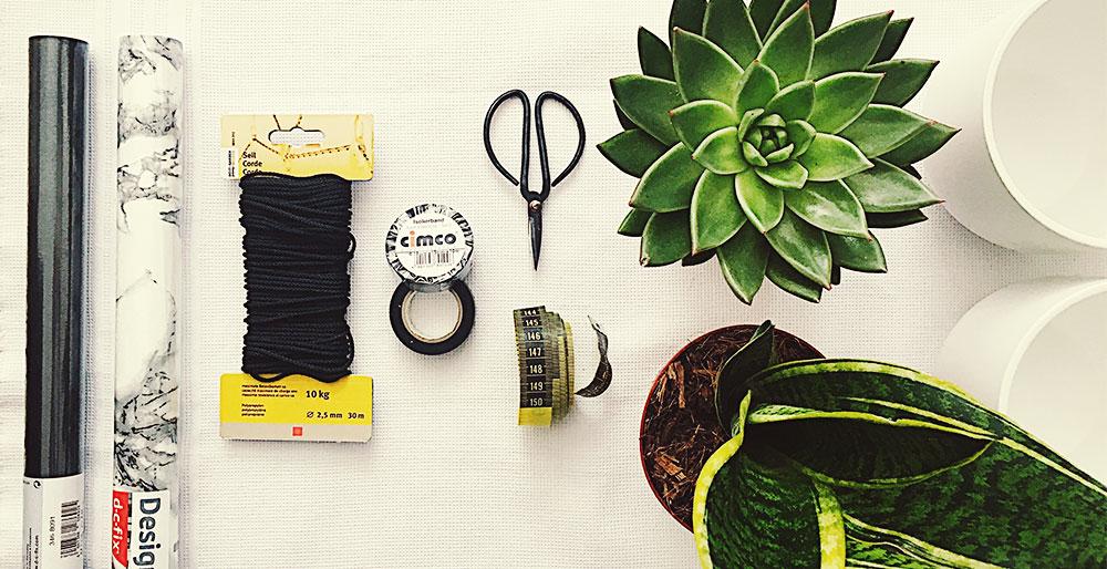 gr ne oase f r graue wintertage deko mit zimmerpflanzen. Black Bedroom Furniture Sets. Home Design Ideas