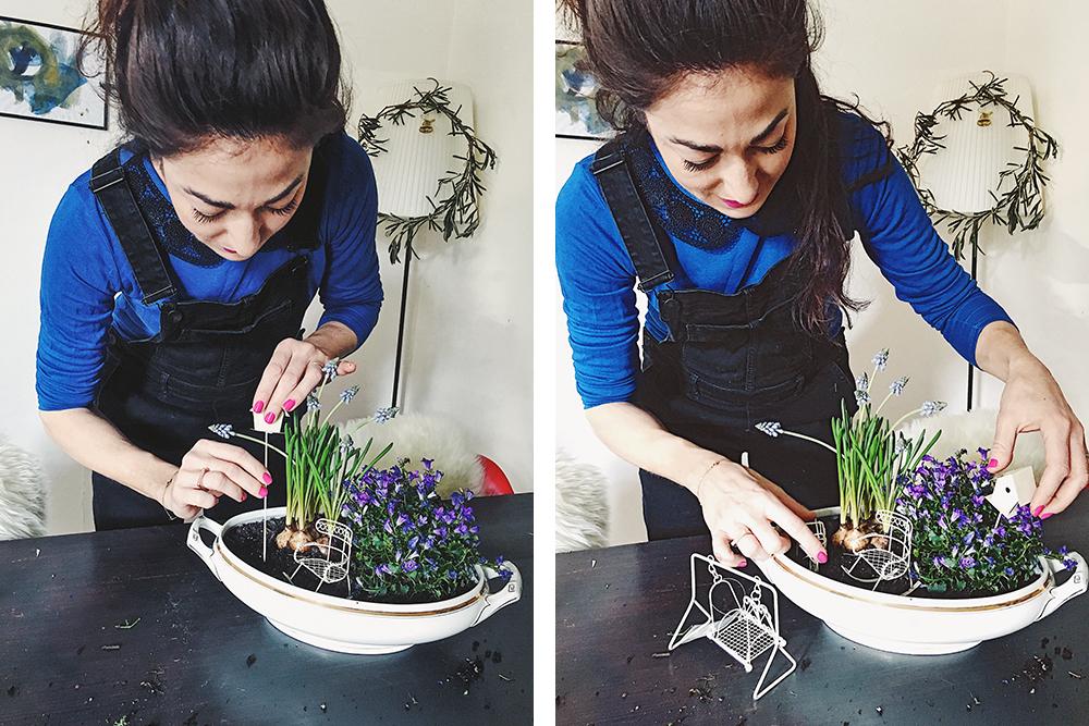 Mini Gardening: Gartengestaltung im ganz Kleinen. Auch für Grosse.