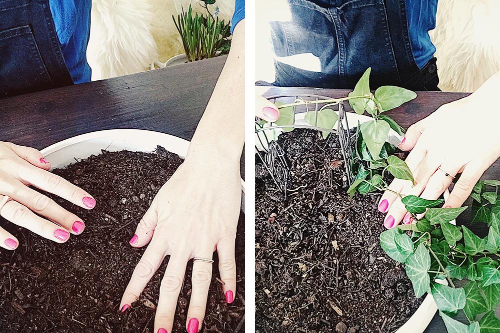 mini gardening gartengestaltung im ganz kleinen auch f r grosse. Black Bedroom Furniture Sets. Home Design Ideas