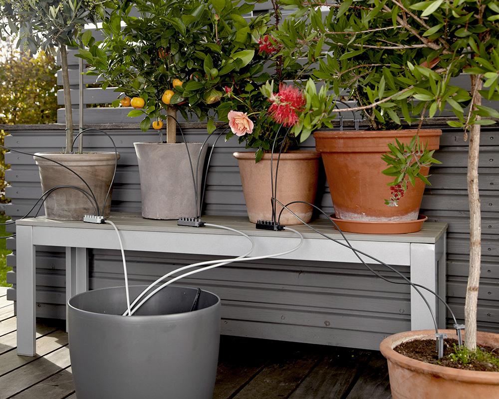 Comment Arroser Mes Plantes Pendant Les Vacances conseils et astuces pour l'arrosage du jardin - do it +