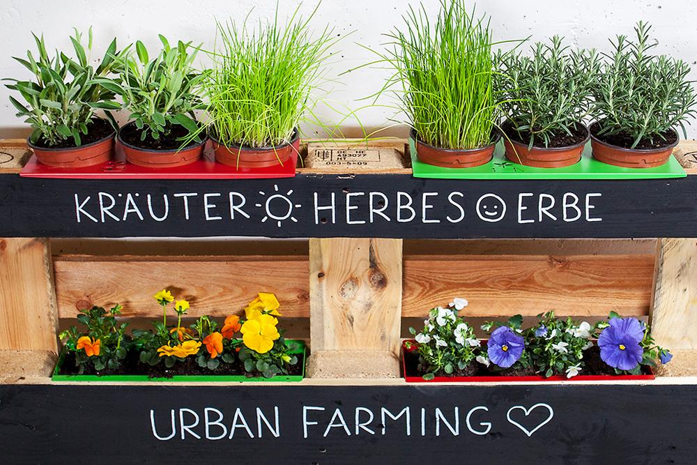 Wie Wurde Die Palette Zum Garten Dank Urban Farming Und Upcycling