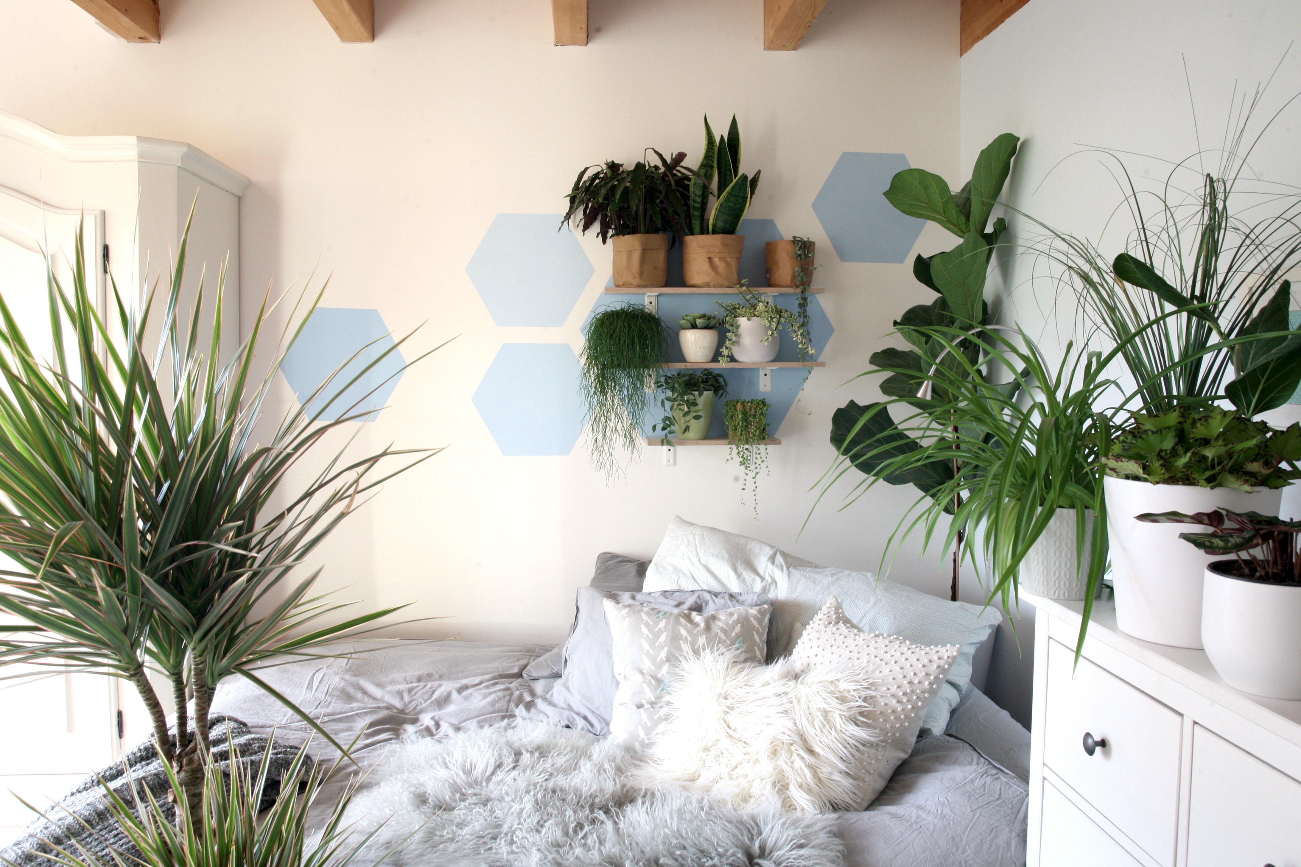 Mach Dein Zimmer Zum Modernen Urban Jungle